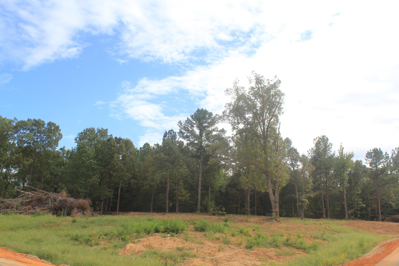 46 Hayward Drive, Marshall, Mississippi 38611, ,Land,For Sale,Hayward,331655