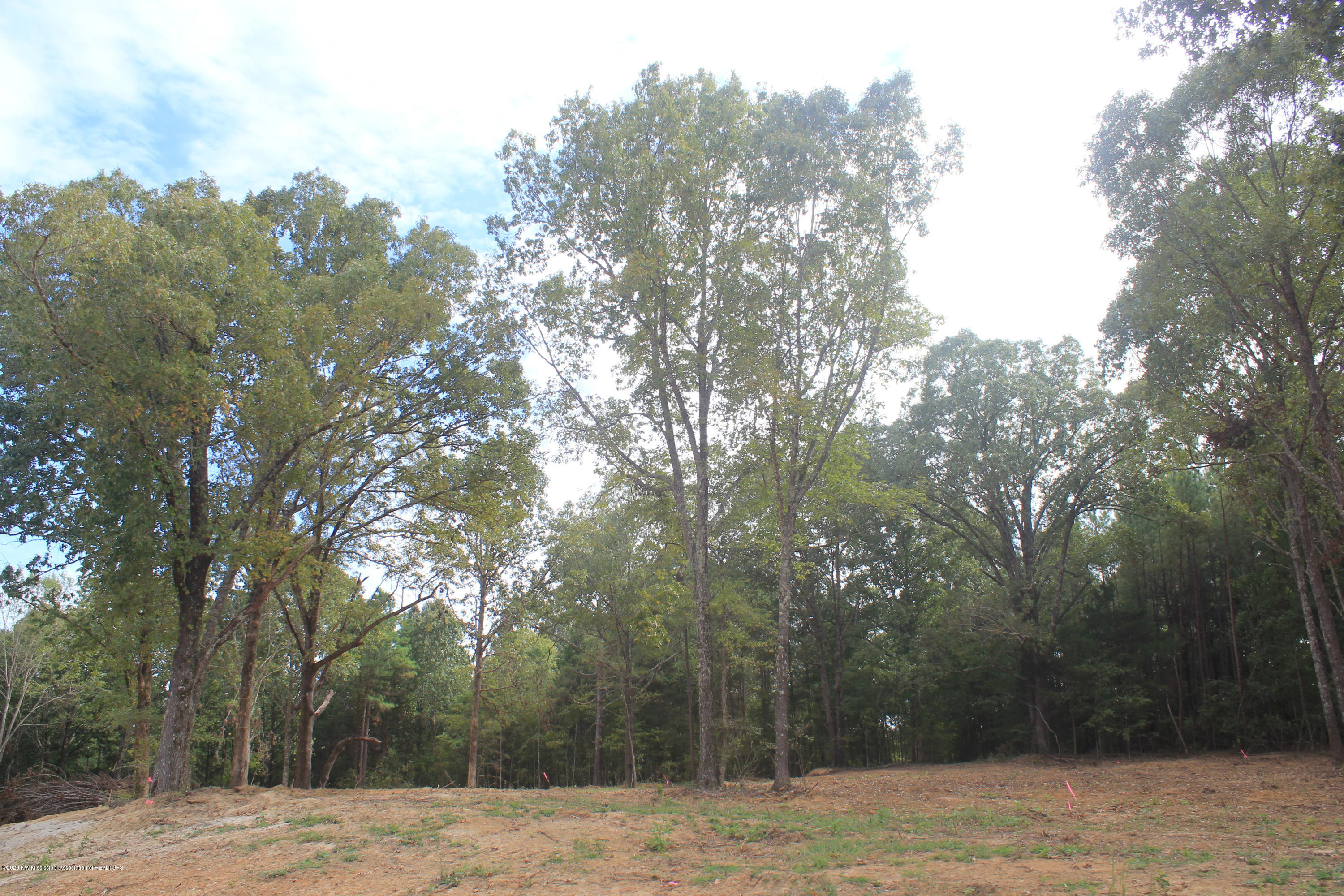 53 Hayward Drive, Marshall, Mississippi 38611, ,Land,For Sale,Hayward,331661