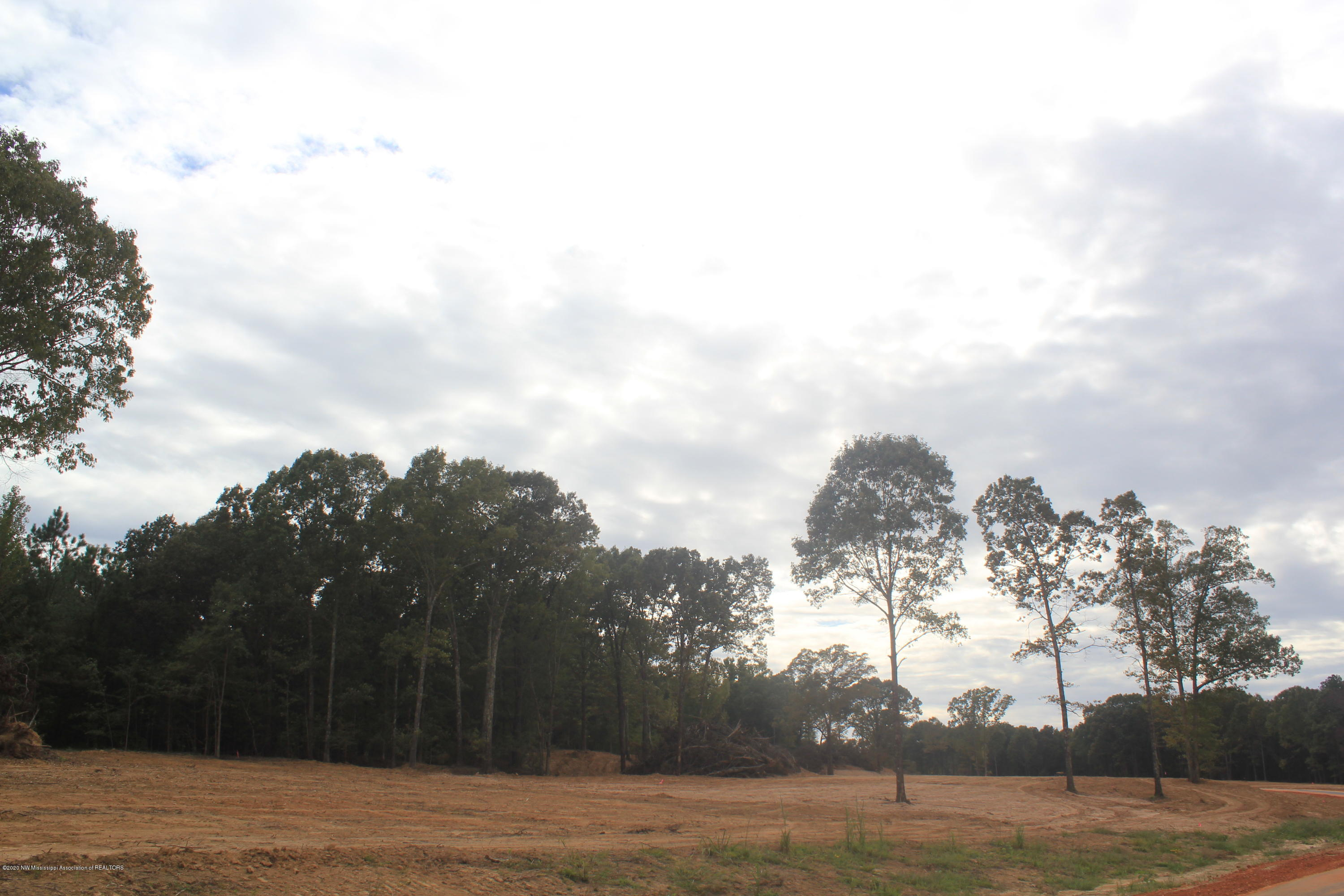 54 Hayward Drive, Marshall, Mississippi 38611, ,Land,For Sale,Hayward,331662