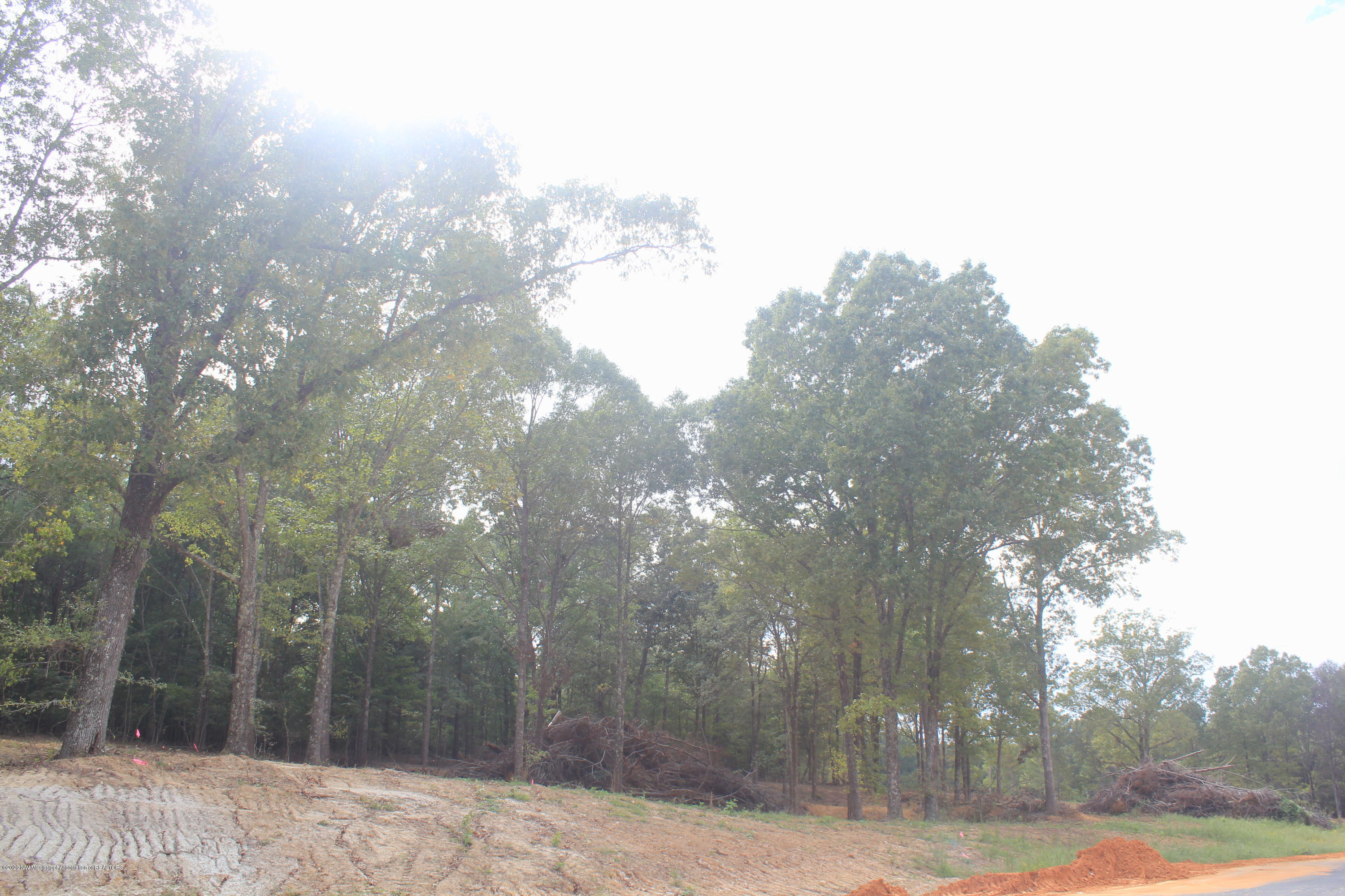 55 Hayward Drive, Marshall, Mississippi 38611, ,Land,For Sale,Hayward,331663
