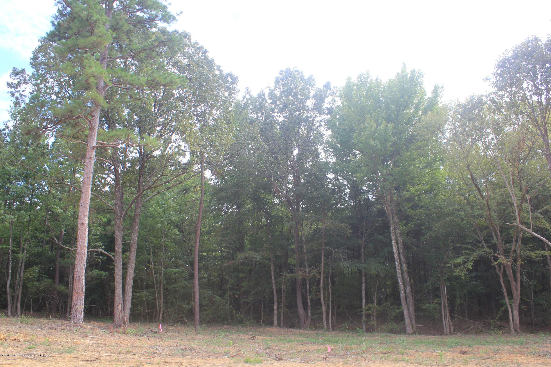58 Hayward Drive, Marshall, Mississippi 38611, ,Land,For Sale,Hayward,331666