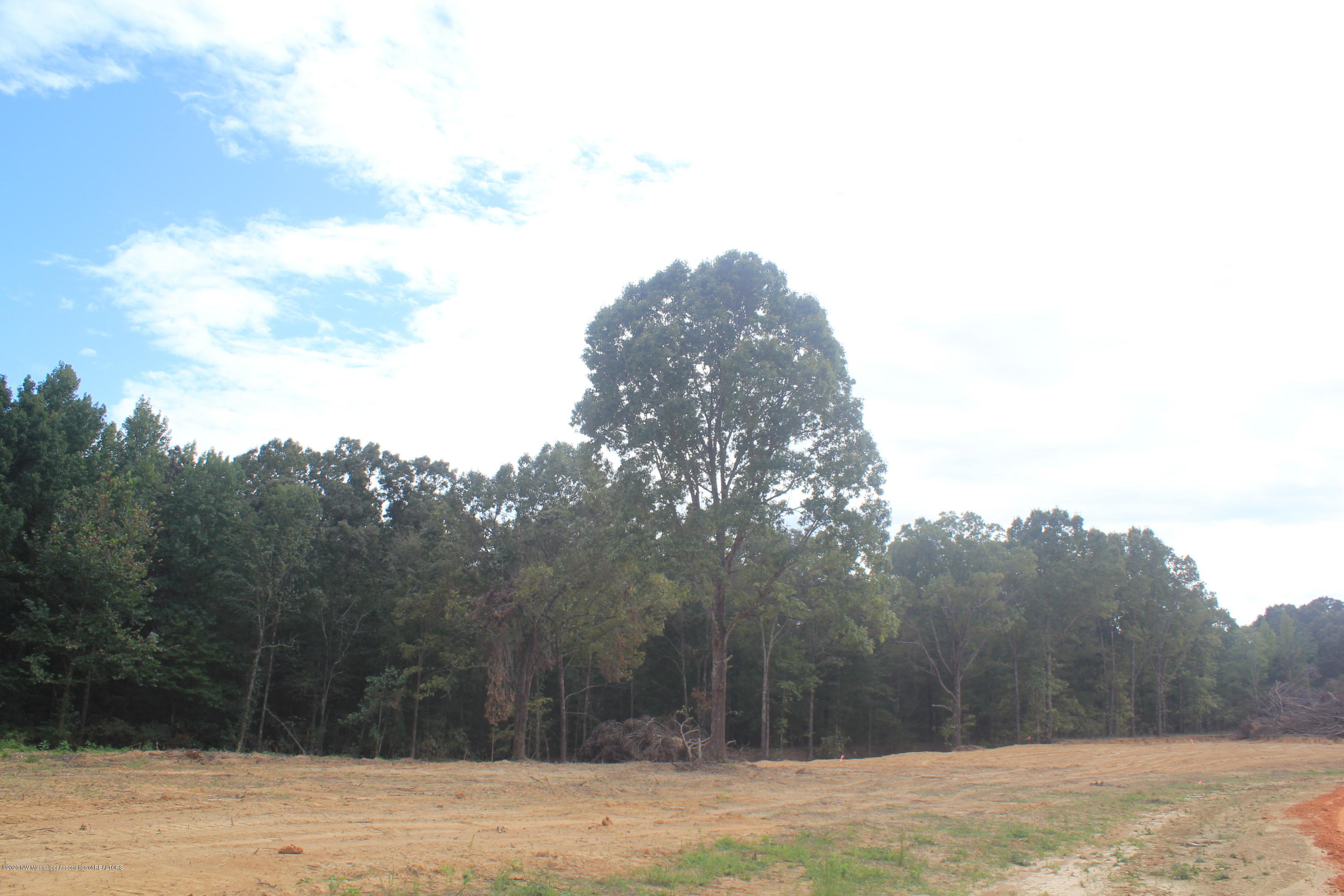 65 Hayward Drive, Marshall, Mississippi 38611, ,Land,For Sale,Hayward,331669