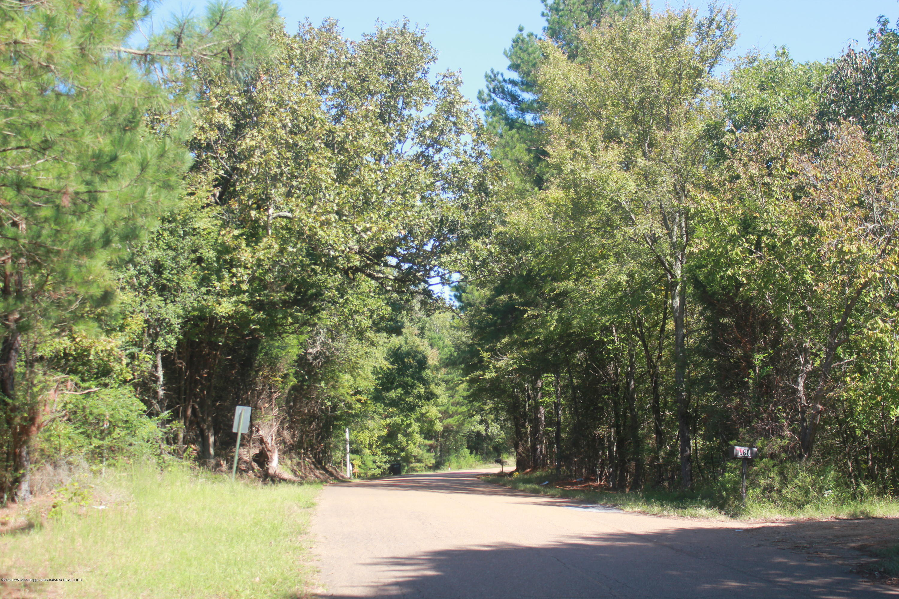 114 Brownlee Road, Tate, Mississippi 38665, ,Land,For Sale,Brownlee,331770