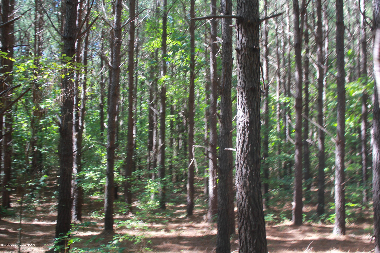 114 Brownlee Road, Tate, Mississippi 38665, ,Land,For Sale,Brownlee,331770