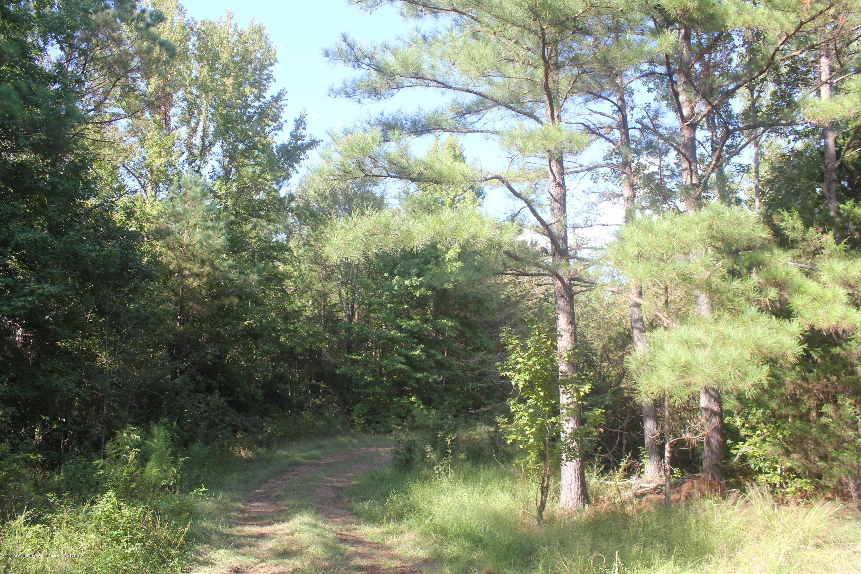 1869 Walhill Road, Tate, Mississippi 38618, ,Land,For Sale,Walhill,322280