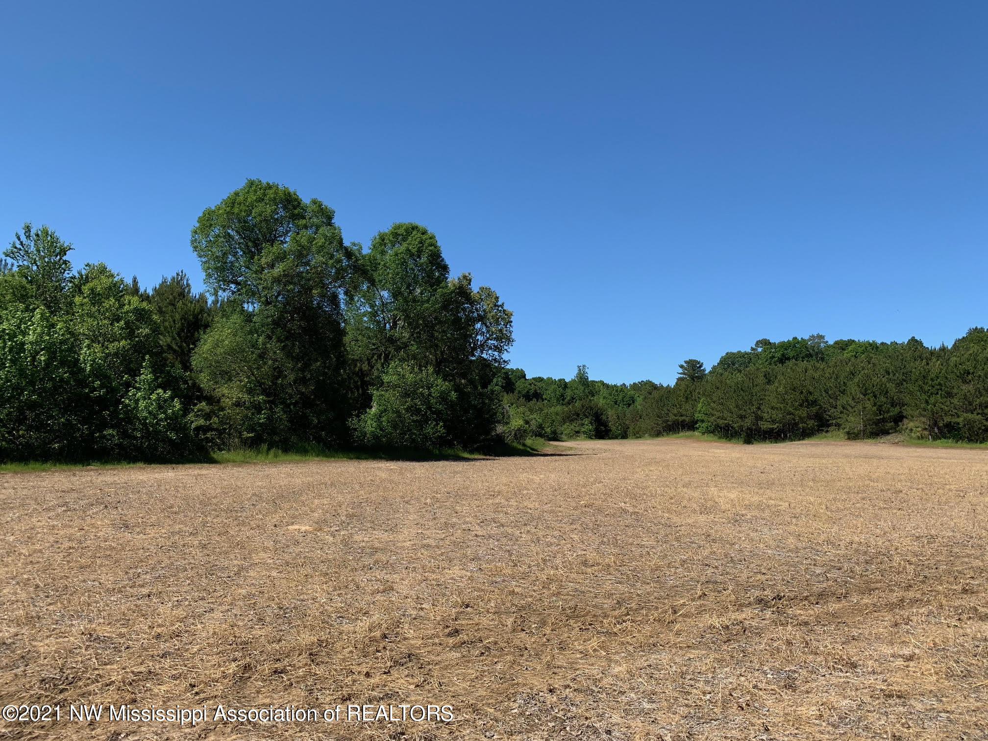 Tract 4 Steward RD (10.1 Acres)