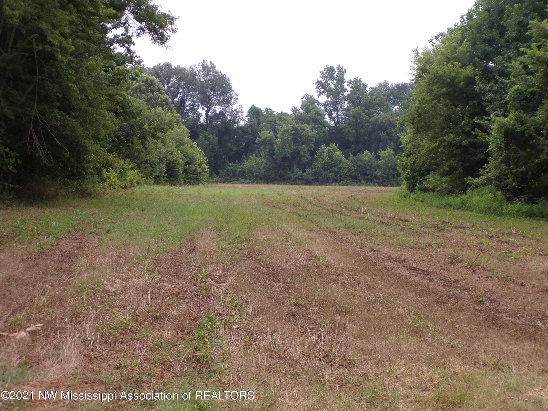 Field 4
