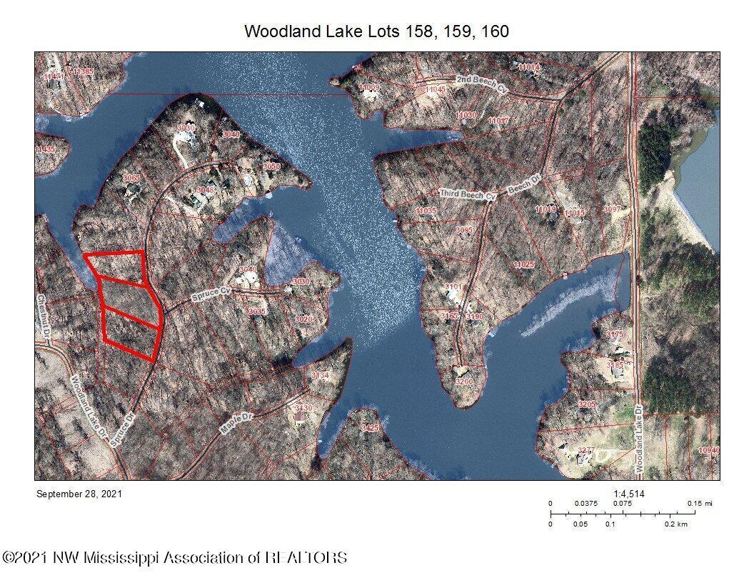 Aerial View of Lake & Lots