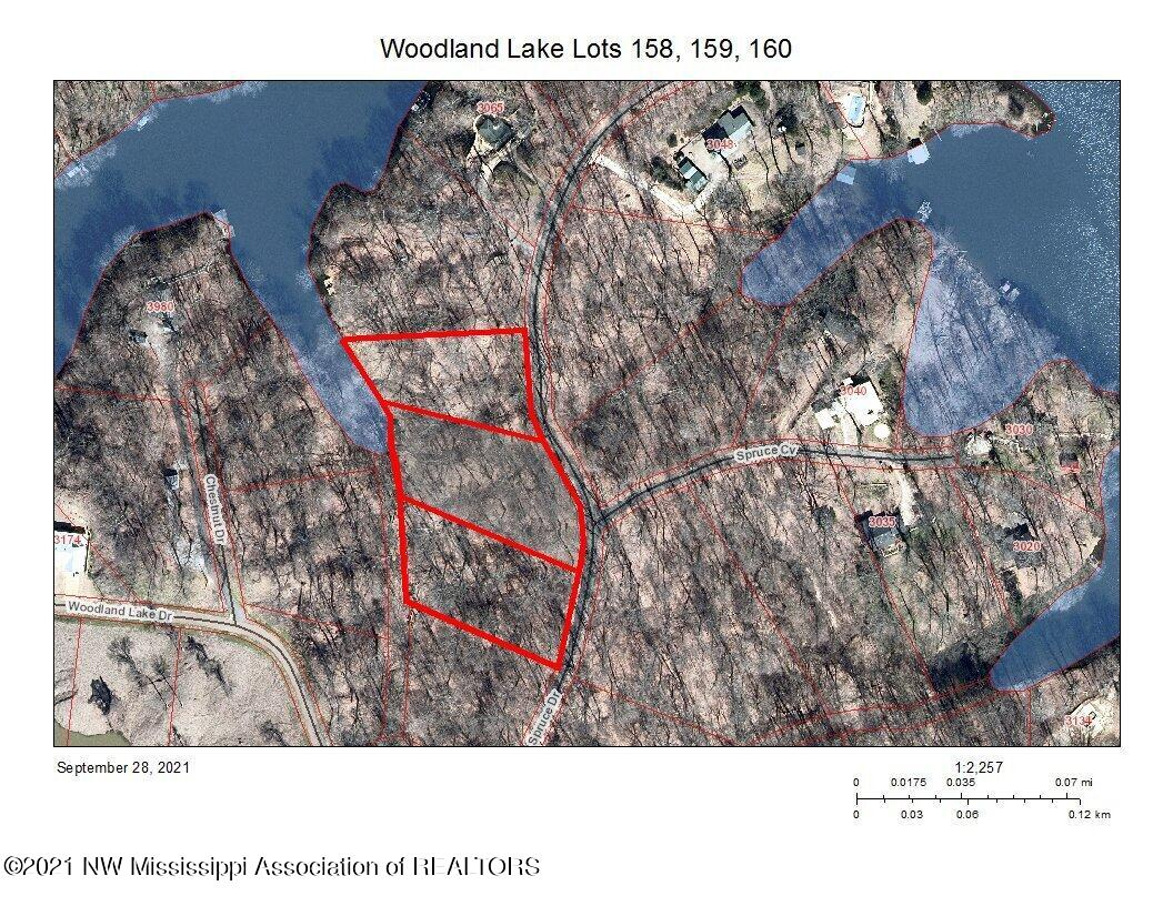 Aerial View of Lake and Lots 158, 159, 1