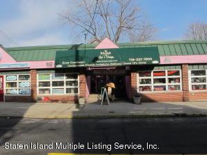 249 Nelson Avenue, Staten Island, NY 10308