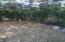 Beautiful, quiet serenity garden...