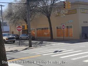 1230 Castleton Avenue, Staten Island, NY 10310