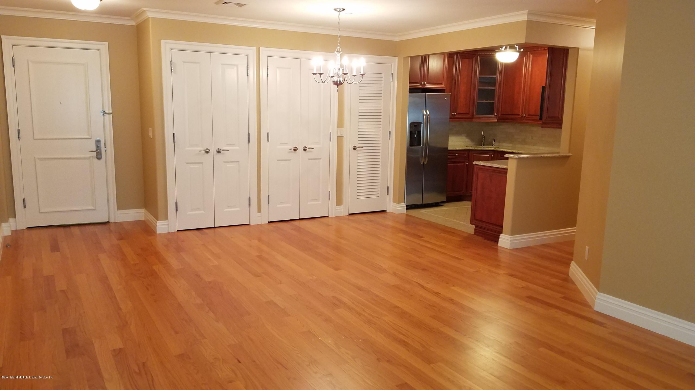 Apartment 155 Bay Street 5j  Staten Island, NY 10301, MLS-1134676-9