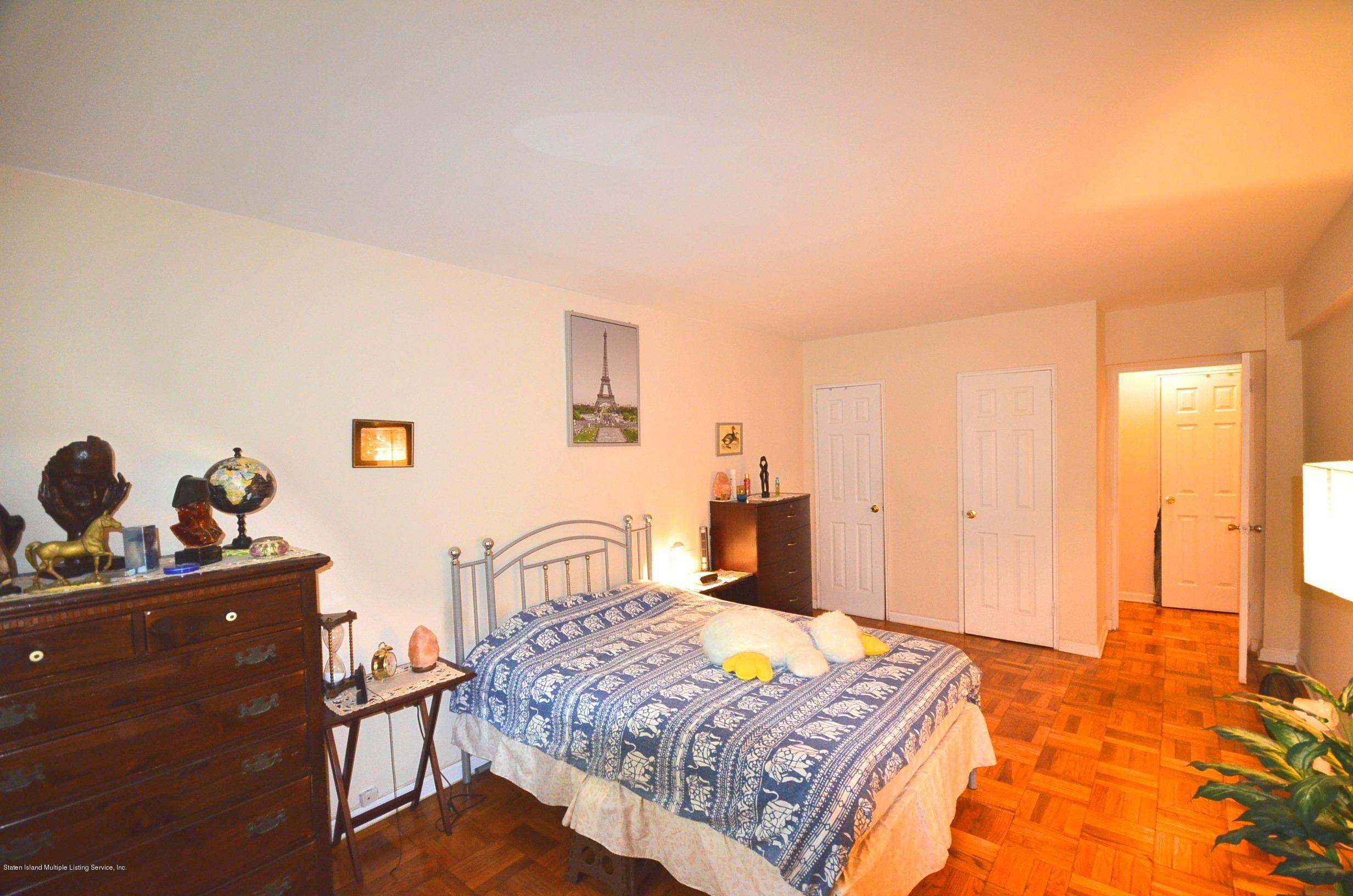 Condo 145 Lincoln Avenue 2a  Staten Island, NY 10306, MLS-1141184-11
