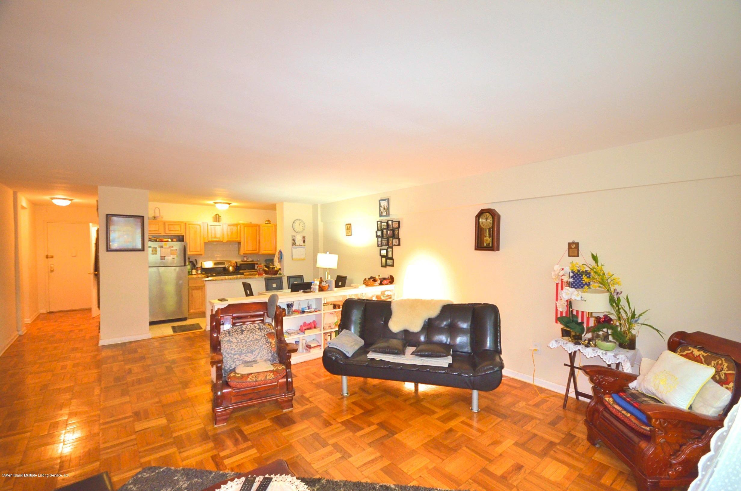 Condo 145 Lincoln Avenue 2a  Staten Island, NY 10306, MLS-1141184-9