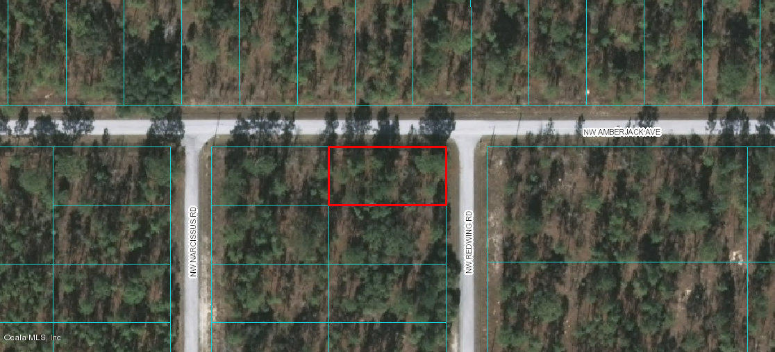 Lot 58 NW Redwing Rd, Dunnellon, FL 34431