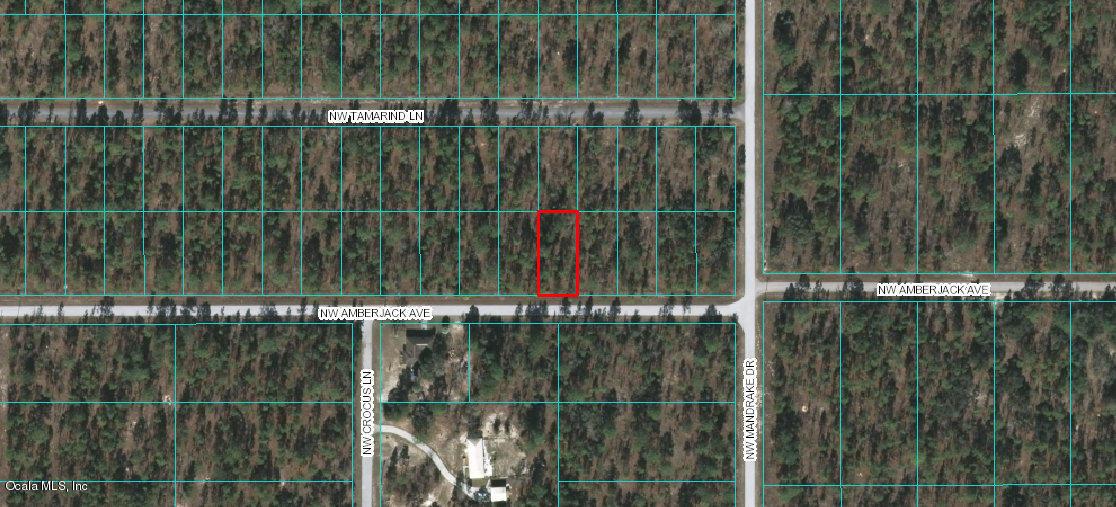 Lot 38 NW Amberjack Ave, Dunnellon, FL 34431