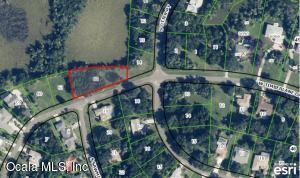 11907 W Timberlane Drive, Homosassa, FL 34448