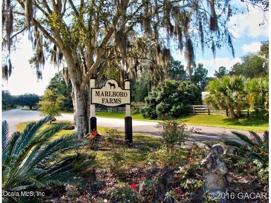 16525 SW 5th Place, Newberry, FL 32669