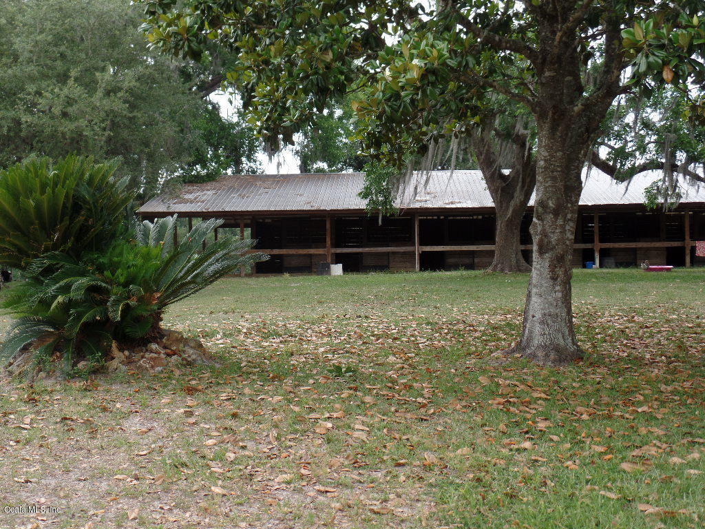 16151 W Highway 318, Williston, FL 32696