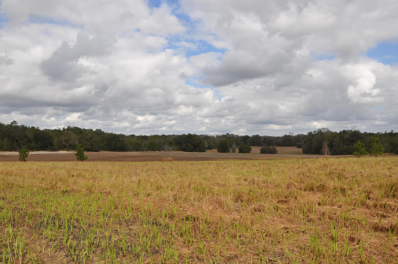 Beautiful Pasture Land