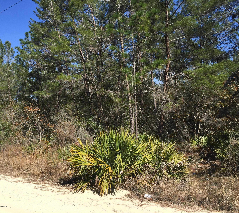 20 78 Acre Ocala, Florida Land for Sale – OHP5125 – Ocala Horse