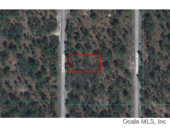 0 NW Tree Top Road, Dunnellon, FL 34431