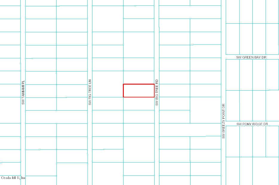 0 SW Big Tree Road, Dunnellon, FL 34432