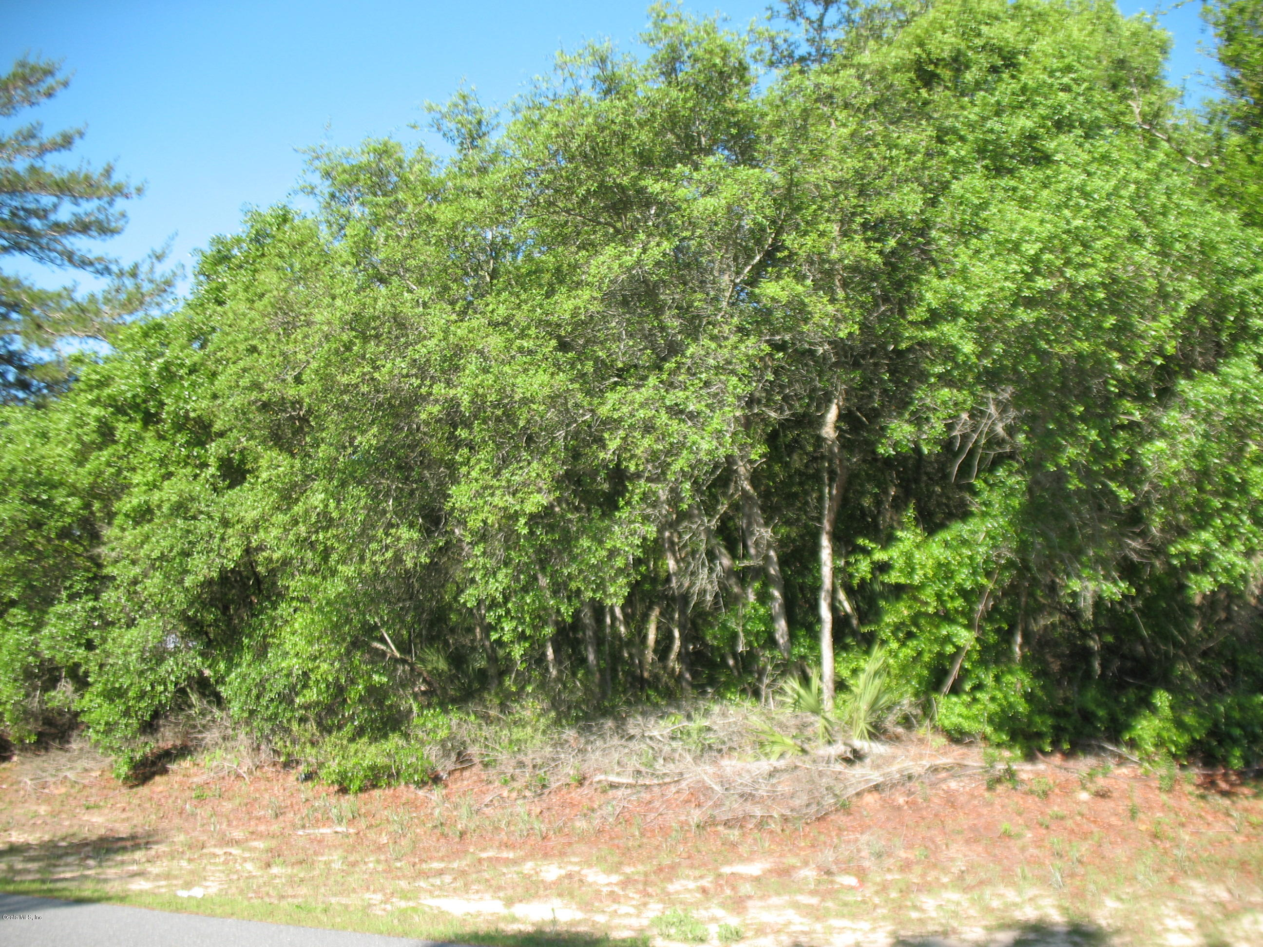 TBA SW 24 Ct Rd, Ocala, FL 34473