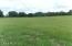 excellent pasture