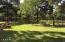paddock/shade trees
