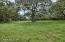 BEAUTIFUL FRONT PASTURE DRAPED WITH OLD OAK TREES