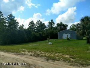 21595 NE 133rd Place, Fort McCoy, FL 32134