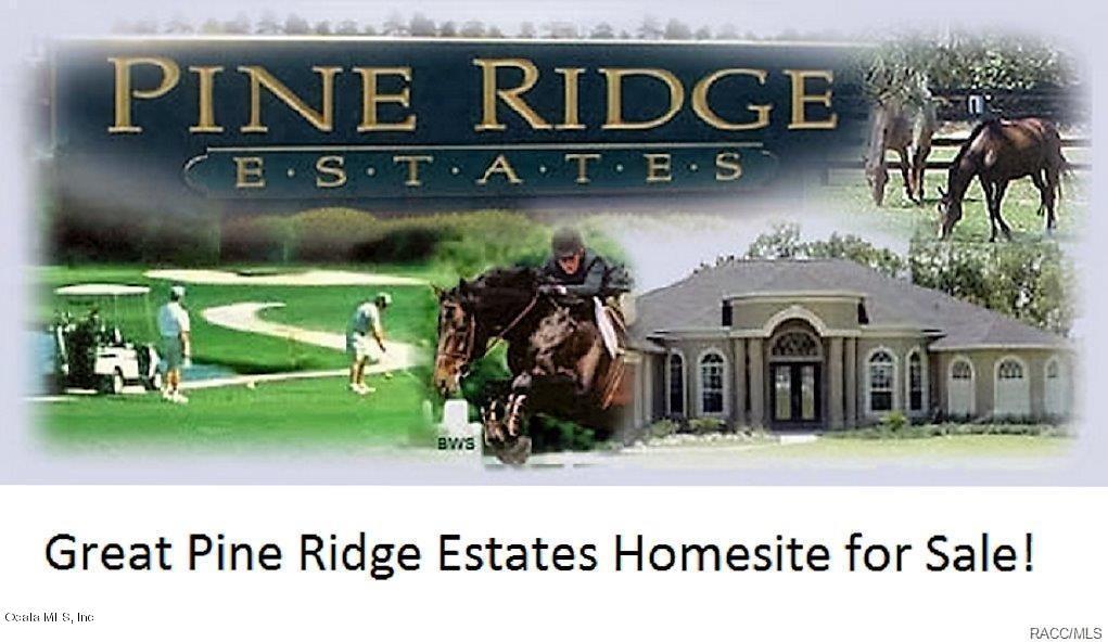 6172 W Pine Ridge Boulevard, Beverly Hills, FL 34465