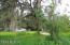 25150 NE 132 Place, Salt Springs, FL 32134