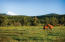 The lovely meadow of Sunriver Resort with snow covered Mt Bachelor sleeping on the horizon