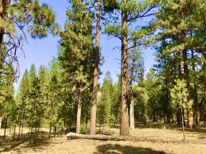 53576 Brookie Way, La Pine, OR 97739