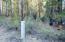Lot 14 Kamloop Lane, Gilchrist, OR 97737