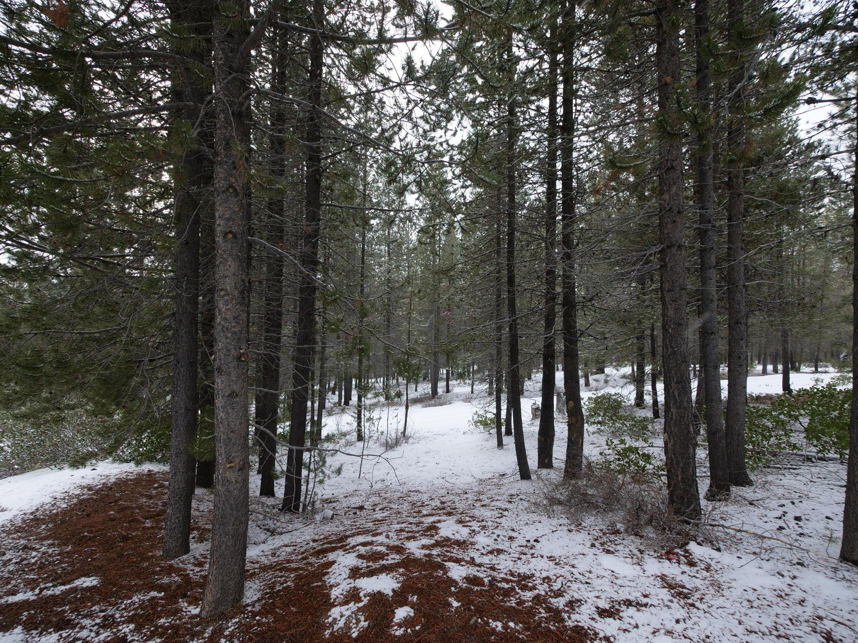Pine Creek Loop (1 of 1)