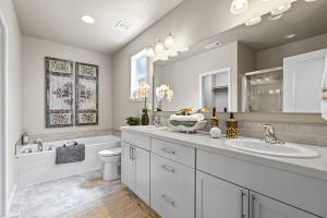 Hudson - Master Bathroom