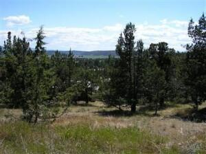 Undetermined site address Avenue, Prineville, OR 97754