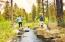 The nearly nine miles of paved paths and soft trails wind their way through forests of evergreens, across lush meadows and along lakes and streams.