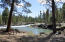53568 Wildriver Way, La Pine, OR 97739