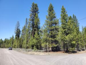 Treed, level corner lot that is nearly 1.5 acres.