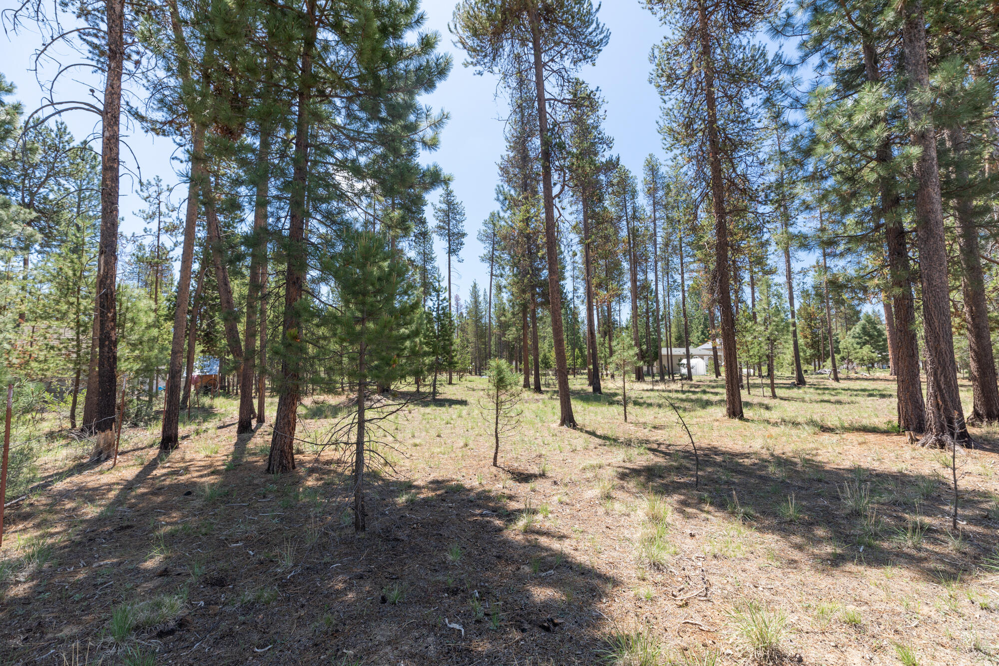 3200 Lot Silver Spur Rd_ (9)