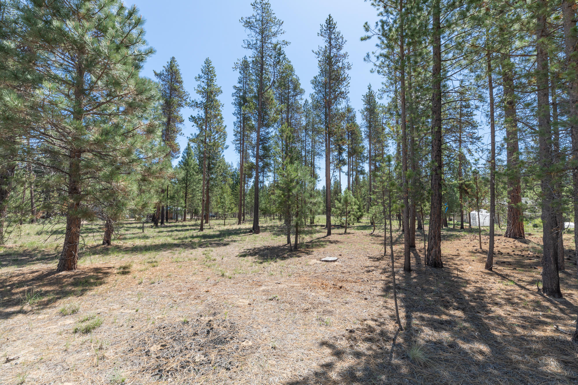 3200 Lot Silver Spur Rd_ (10)