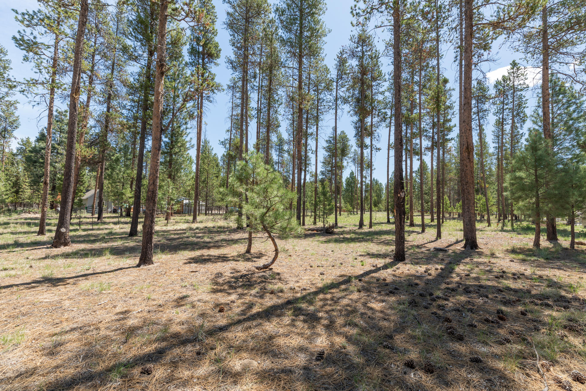 3200 Lot Silver Spur Rd_ (11)