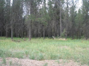 54425 Silver Fox Drive, Bend, OR 97707