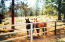 Such a beautiful setting for your horses.