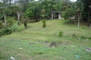 Terreno En Ventaen Panama Oeste, Capira, Panama, PA RAH: 15-952
